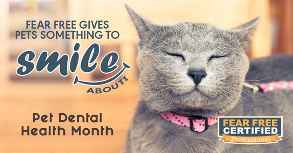 Pet-Dental-Health-Month-V12